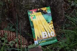 Stangenbohne, gelb, Bio